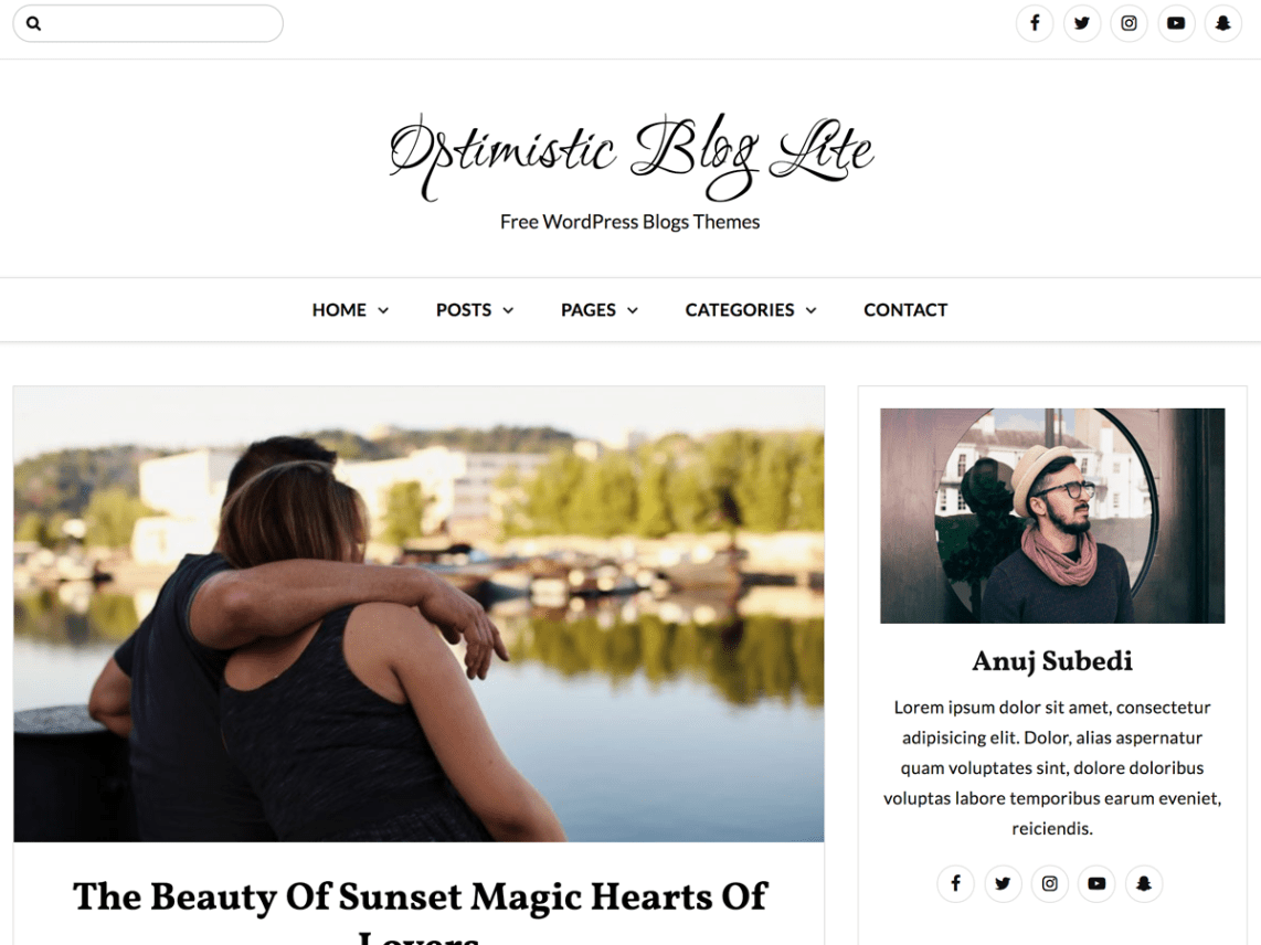 Best Free Blog Wordpress Themes 2019 - Theme Freesia